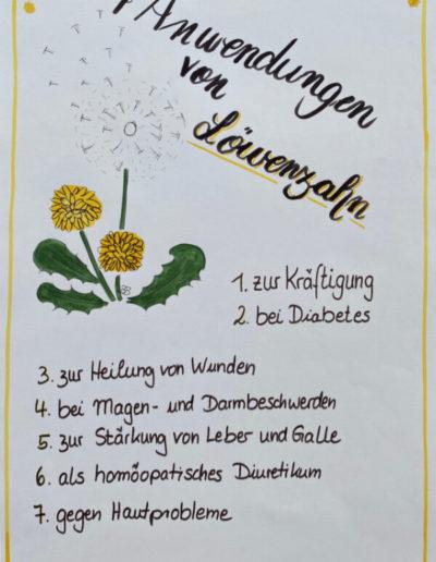 Loewenzahn